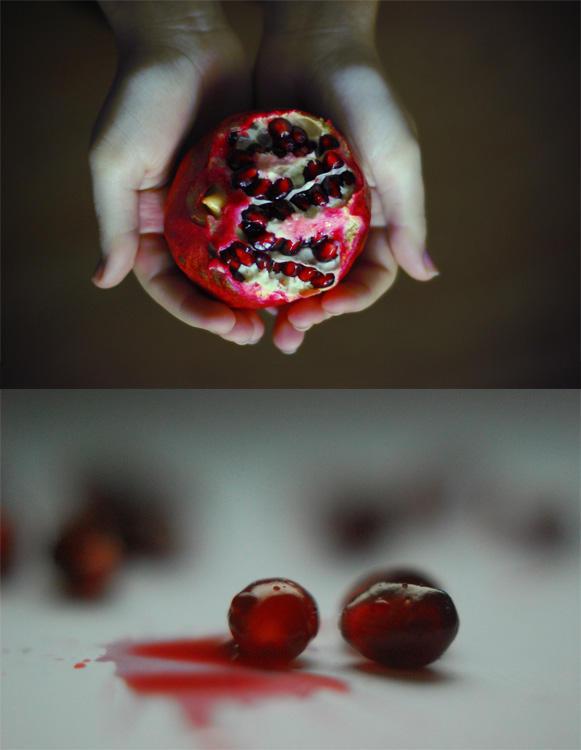 Pomegranates in winter by unda