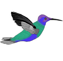 Hummingbird by LadyDemmona