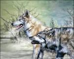 Wolf2 by Ruskatukka