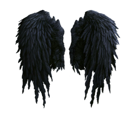 black angel wings stock PNG by Shadow-of-Nemo