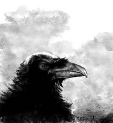 raven's eye by Terribilus