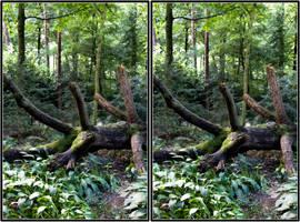 Fallen tree - CE3D by NightSheep
