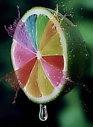 lemon-roulette by YOKOKY