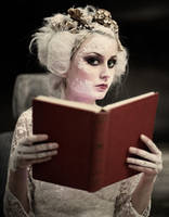 reader by andrewfphoto