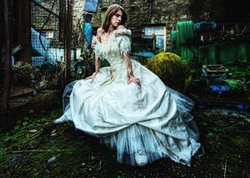 when brides go bad by andrewfphoto