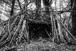 Starter Home by AimeeDouglass