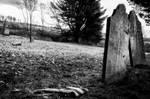 Forgotten by AimeeDouglass