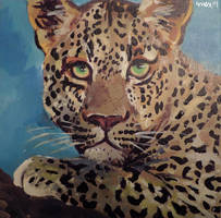 Leopard by 0becomingX