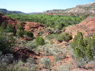 In the Palo Duro Canyon Near Amarillo by ljljljs