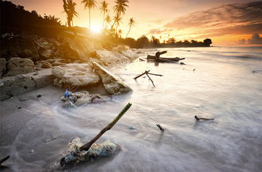 Save Our Nature by GregoriusSuhartoyo