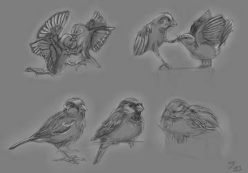 Bird1 by mary3m