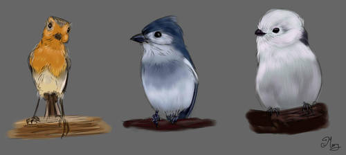 birds practice :) by mary3m