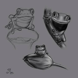 Frogs by mary3m