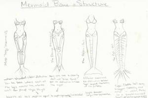 Mermaid Anatomy by psychoviolinist1012