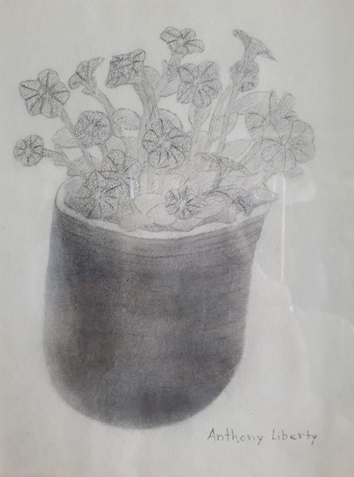 flowers drawing by AnthonyLiberty