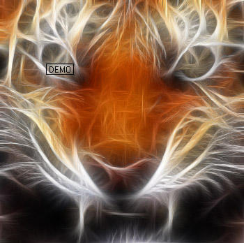 Fractal Tiger2 by dolphin-dreamer