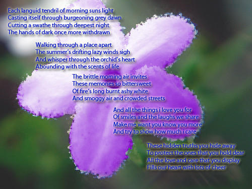 A Poem For Someone Special By Dolphin Dreamer On Deviantart