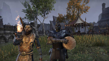 ESO Character Profile: Gronag and Kalog by pwnsage