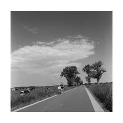 Road to ... by BWAMB