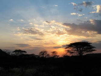 safari sunset by peterburk