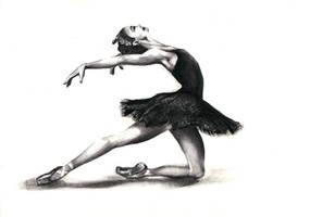 Black swan by KaLa89