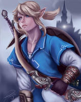 Link // Zelda Breath Of the Wild by Pomelyne