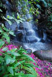 Waterfall by MorningMorning