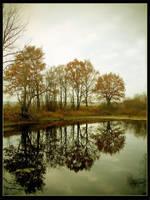Reflection by q3aki