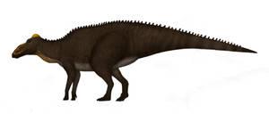 Shantungosaurus by Dragonthunders