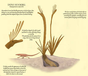 Birdnoodle Spec Challenge: Dune hookbill by Dragonthunders