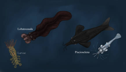 Europa Wildlife: Palpomorpha overview by Dragonthunders
