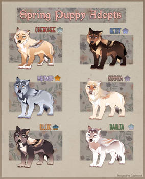 Spring Pup Adopts Batch- 1 Left! by Tazihound