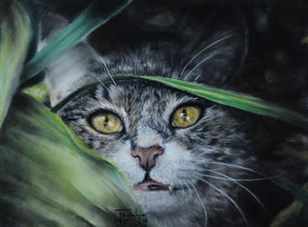 Pastel Drawing 'I iz hidden, so you can't find mi' by lluvia-estival