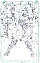 JLA BlackCanary by jgalino