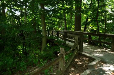 Bridge by sarsgaard