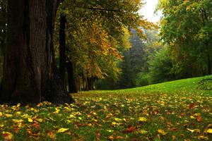 Autumn by CitizenFresh