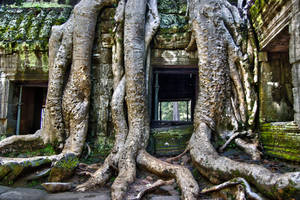 Ta  Prohm 3 by CitizenFresh