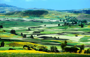 Beautiful  Ethiopia 7 by CitizenFresh