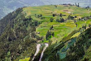 Beautiful Ethiopia 15 by CitizenFresh