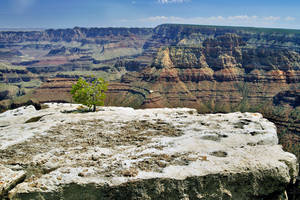 Grand Canyon 20 by CitizenFresh