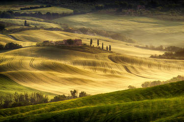 Tuscan  Carpet 2 by CitizenFresh