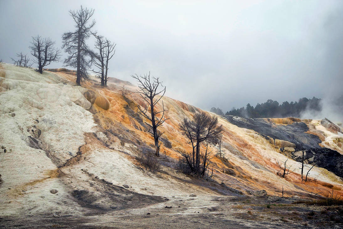 Mammoth Hot Springs in the mist 2 by CitizenFresh