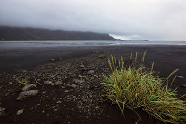 Beautiful Iceland 2 -black beach by CitizenFresh