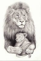 Lion with Sleeping Cub by D-Angeline