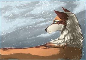 Memories lost in snow by tsicha