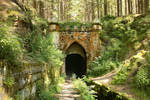 Moss and Bracken Portal by ondrejZapletal