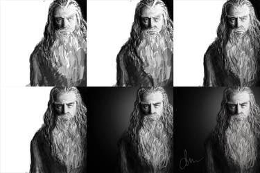 Gandalf - The Grey by daimoc-art