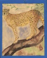 jaguar by chuquin