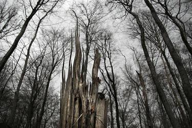 Gothica by Siusam