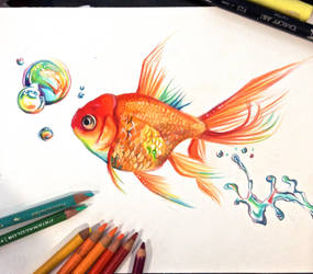 Rainbow Goldfish by Lucky978
